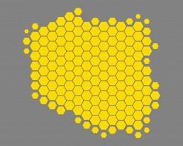 Polskie API to rozwiązane opracowywane przez Związek Banków Polskich dla zgodności z Dyrektywą PSD2